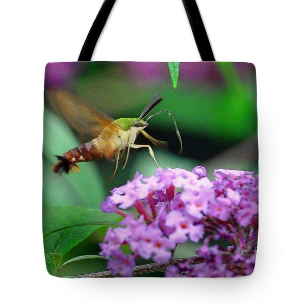 Hummingbird Clearwing Moth Tote Bag by Gary Keesler