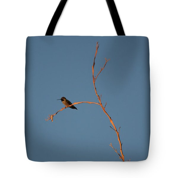 Hummingbird Tote Bag by David S Reynolds