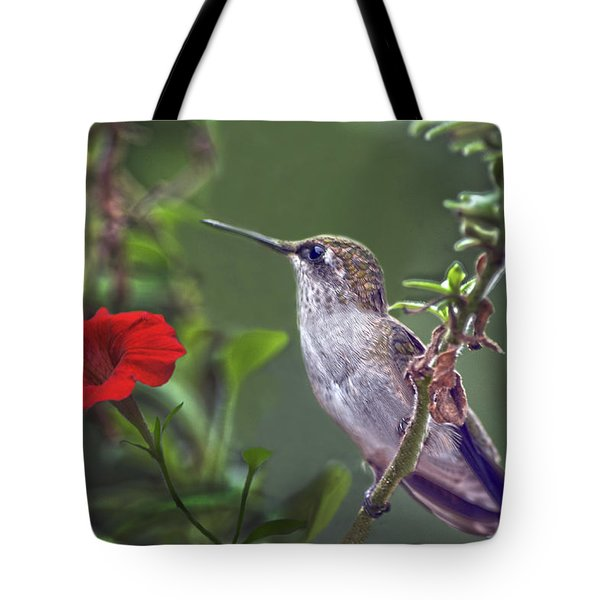 Hummingbird Delight Tote Bag by Sandi OReilly