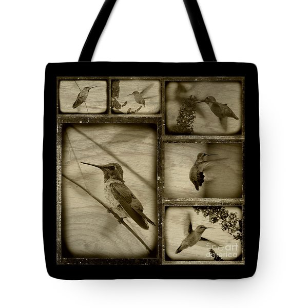 Hummingbird Family Portraits Tote Bag