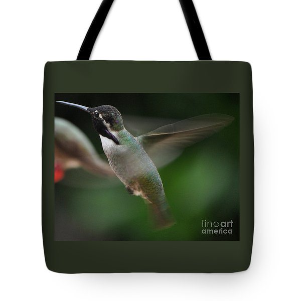 Tote Bag featuring the photograph Hummingbird Male Anna In Flight Over Perch by Jay Milo