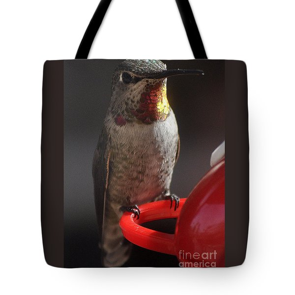 Tote Bag featuring the photograph Hummingbird Female Anna by Jay Milo