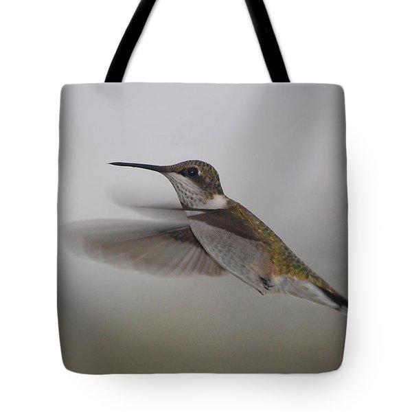 Tote Bag featuring the photograph Hummingbird  by Leticia Latocki