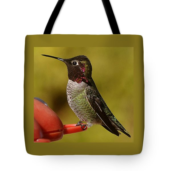 Hummingbird Male Allan Tote Bag