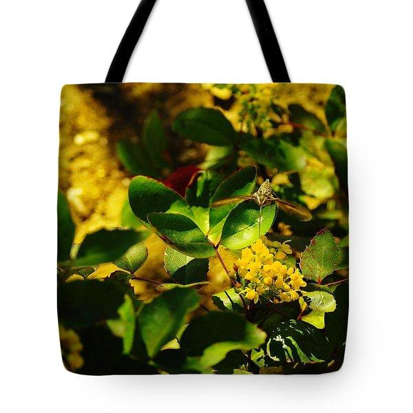 Hummingbird Moth Tote Bag by Jeff Swan