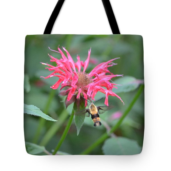 Hummingbird Moth Tote Bag by Richard Bryce and Family