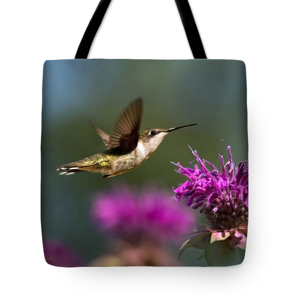 Hummingbird Moving Along Tote Bag by Christina Rollo