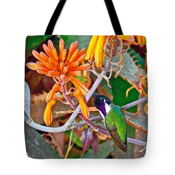 Hummingbird On Aloe In Living Desert In Palm Desert-california Tote Bag