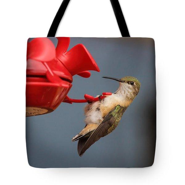 Hummingbird On Feeder Tote Bag by Alan Hutchins