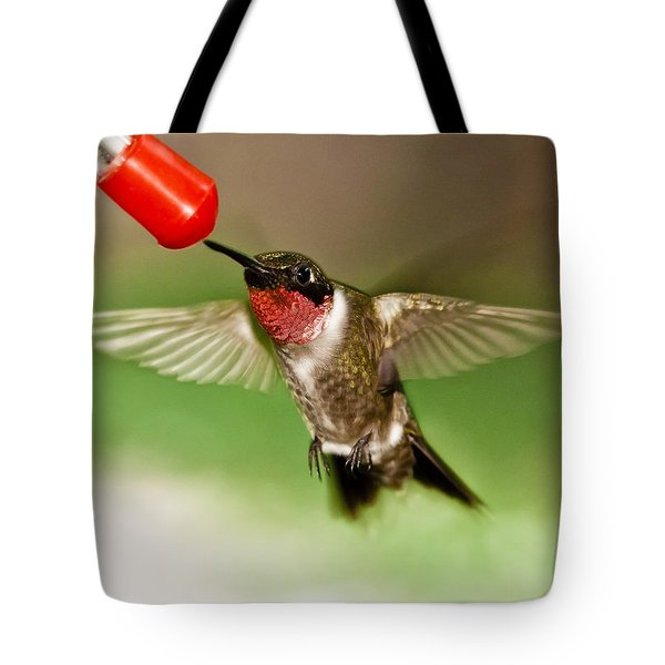 Hummingbird Tote Bag by Robert L Jackson
