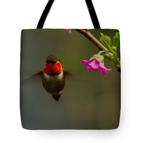 Hummingbird Tote Bag by Tikvah's Hope