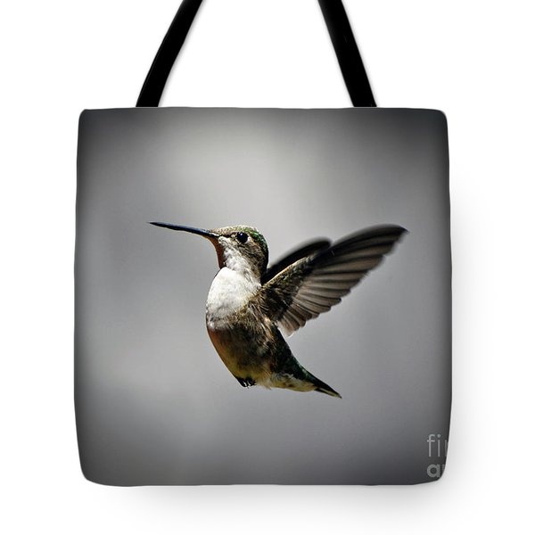Hummingbird Tote Bag by Savannah Gibbs