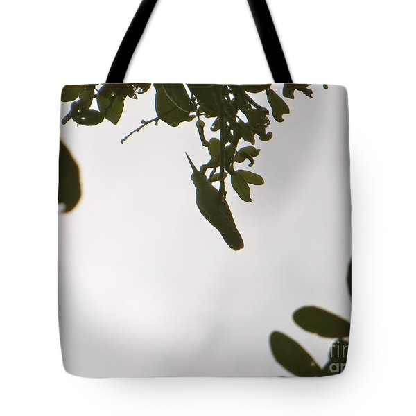 Tote Bag featuring the photograph Hummingbird Silhouette 1 by Joy Hardee