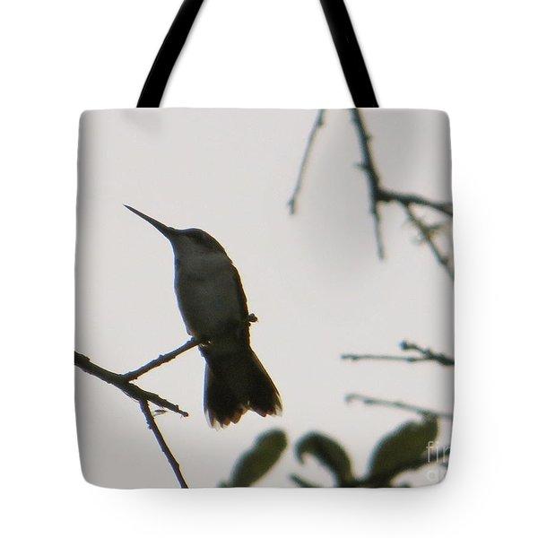 Hummingbird Silhouette 2 Tote Bag