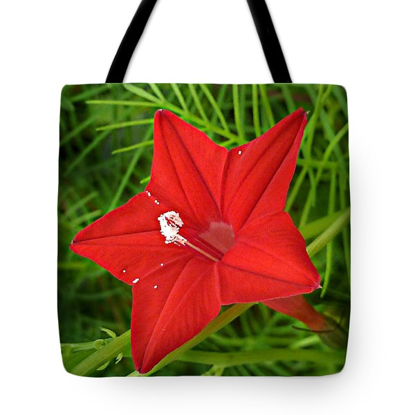 Tote Bag featuring the photograph Hummingbird Vine by William Tanneberger