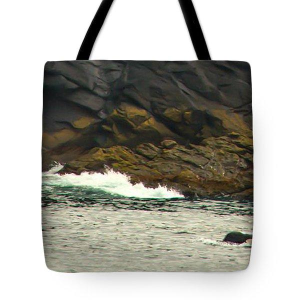 Humpback Whale Tote Bag by Debra  Miller
