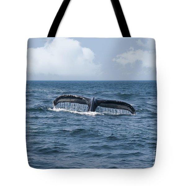 Humpback Whale Fin Tote Bag