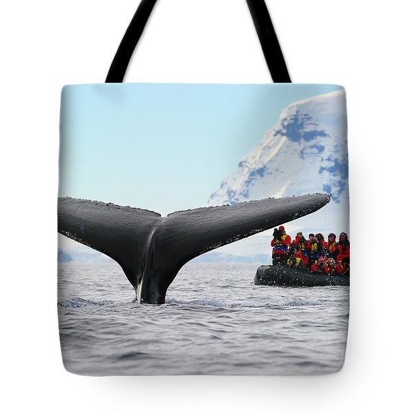 Humpback Whale Fluke  Tote Bag by Tony Beck