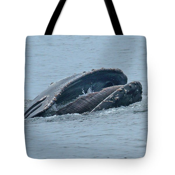 Tote Bag featuring the photograph Humpback Whale  Lunge Feeding Monterey Bay 2013 by California Views Mr Pat Hathaway Archives