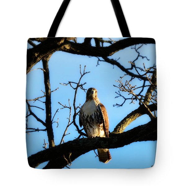 Tote Bag featuring the photograph Hungry by Ally  White