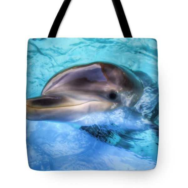 Tote Bag featuring the photograph Hungry Dolphin by Tim Stanley