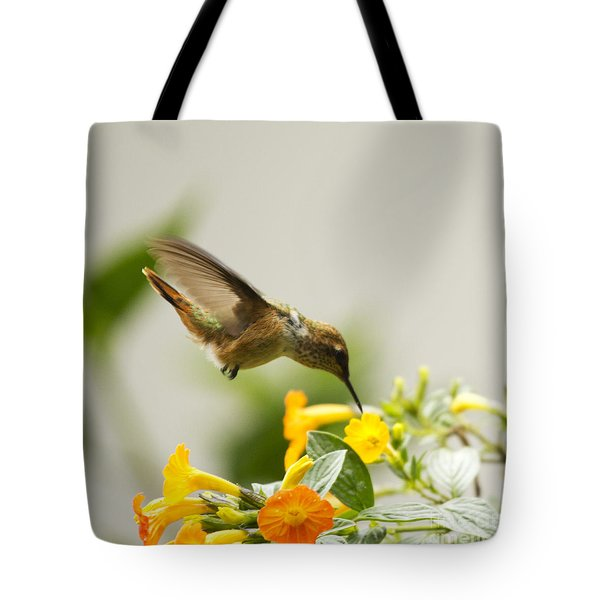 Hungry Flowerbird Tote Bag