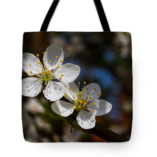 Hungry For Sun Tote Bag