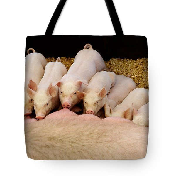 Hungry Little Piglets Tote Bag