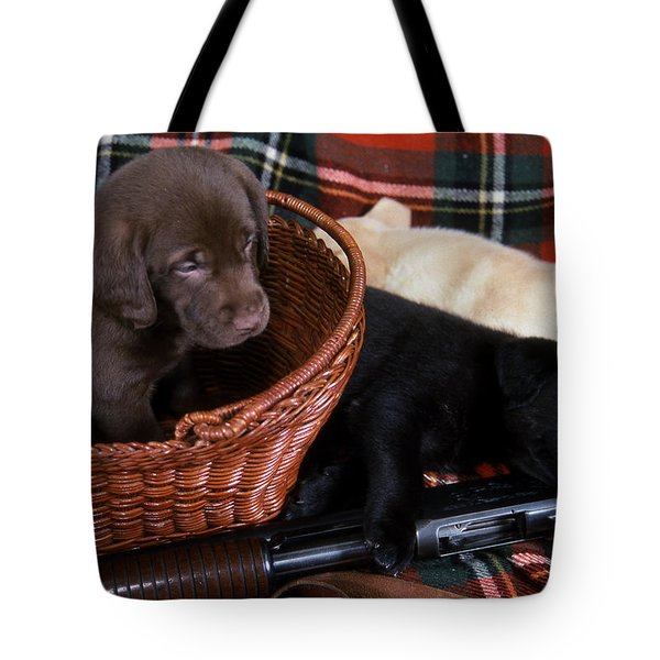 Hunters Puppy Dreams Tote Bag by Skip Willits