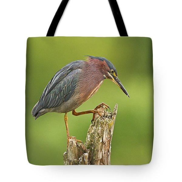 Hunting Green Heron Tote Bag