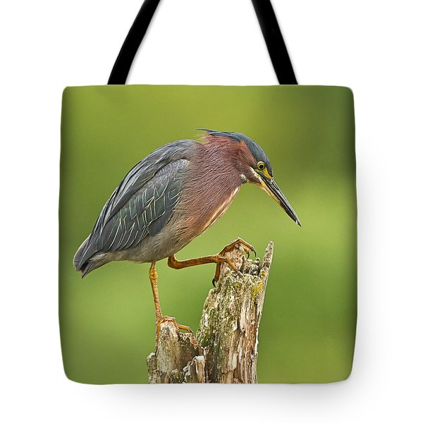 Hunting Green Heron Tote Bag