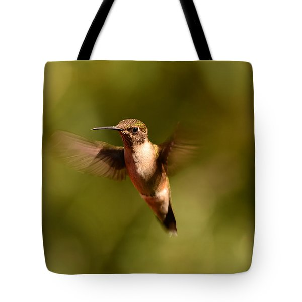 Hurry Up And Take My Picture Tote Bag