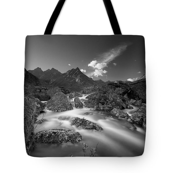 Hush Tote Bag by Ed Boudreau