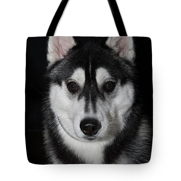 Husky Portrait Tote Bag
