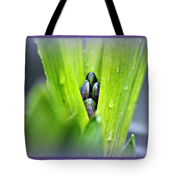 Hyacinth For Micah Tote Bag by Katie Wing Vigil