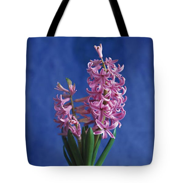 Hyacinth Tote Bag by Lana Enderle