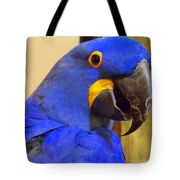 Hyacinth Macaw Portrait Tote Bag by Lingfai Leung