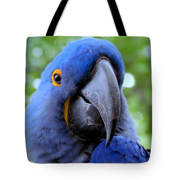 Hyacynthia Tote Bag