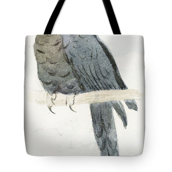 Hyancinth Macaw Tote Bag by Henry Stacey Marks