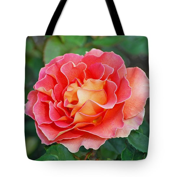 Hybrid Tea Rose  Tote Bag by Lisa Phillips