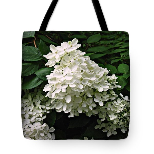 Tote Bag featuring the photograph Hydrangea Arborescens ' Annabelle ' by William Tanneberger