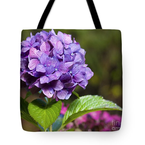 Tote Bag featuring the photograph Hydrangea by Belinda Greb
