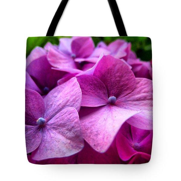 Hydrangea Bliss Tote Bag