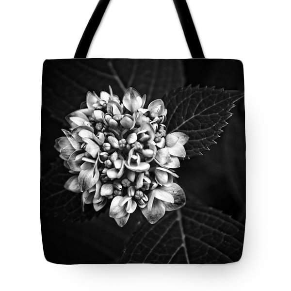 Tote Bag featuring the photograph Hydrangea In Monochrome #5 by Ben Shields
