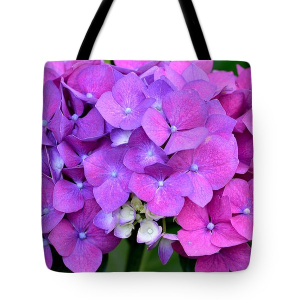 Tote Bag featuring the photograph Hydrangea  by Kathy King