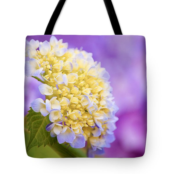Hydrangea On Purple Tote Bag by Parker Cunningham