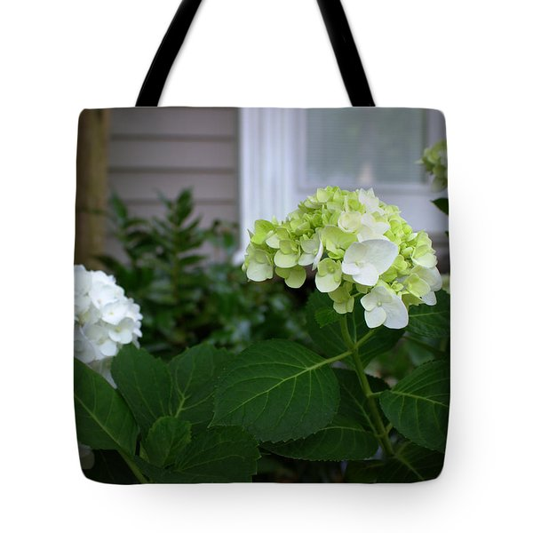Hydrangeas IIi Tote Bag by Beth Vincent