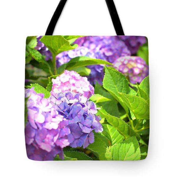 Hydrangeas In The Sun Tote Bag by Rachel Mirror