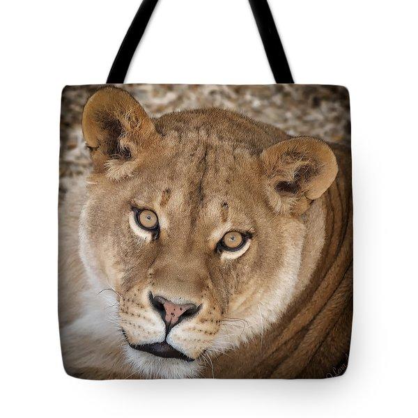 Hypnotic Gaze Tote Bag by Lena  Owens OLena Art