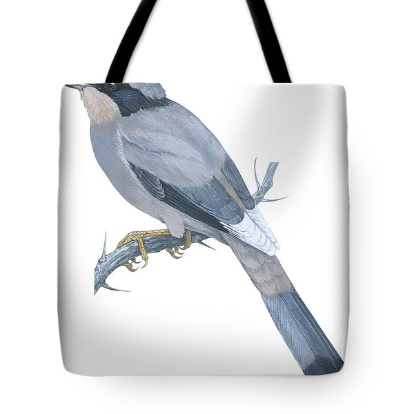 Hypocoly Tote Bag by Anonymous